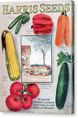 Historic Harris Seeds Catalog Canvas Print by Remsberg Inc