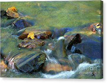 Hdr Landscape Canvas Print - Hitching A Ride by Sandra Bronstein