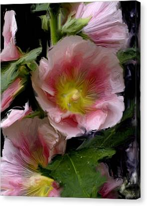 Hollyhock Heaven Canvas Print