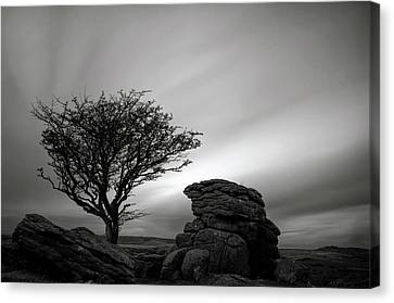 Holwell Tor And Lone Tree On Dartmoor Canvas Print