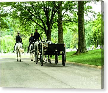 Horse And Caisson Team At Arlington Cemetery Canvas Print by William Rogers
