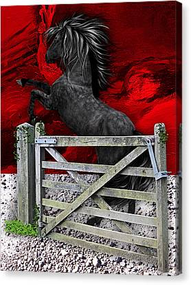 Horse Dreams Collection Canvas Print by Marvin Blaine