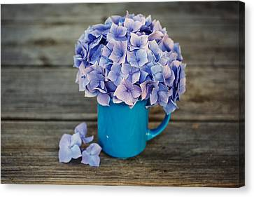Hortensia Flowers Canvas Print