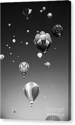 Hot Air Balloons Canvas Print by Michael Howell - Printscapes