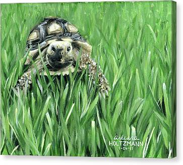 Howdy Dudie Canvas Print
