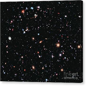 Hubble Extreme Deep Field Canvas Print by Nasa