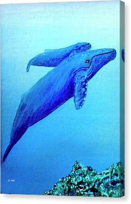 Humpback Mother Whale And Calf #21 Canvas Print by Donald k Hall