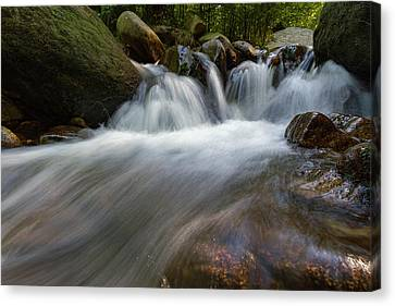 Ilse, Harz Canvas Print by Andreas Levi
