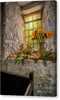 In The Light Canvas Print by Adrian Evans