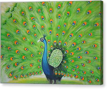 Indian Peacock Canvas Print by Shanta Rathie