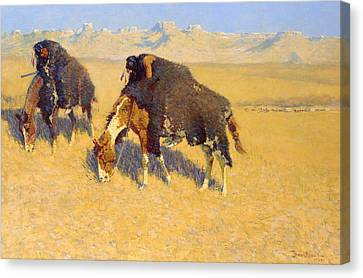 Indians Simulating Buffalo Canvas Print