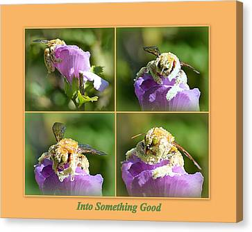 Canvas Print featuring the photograph Into Something Good by AJ Schibig