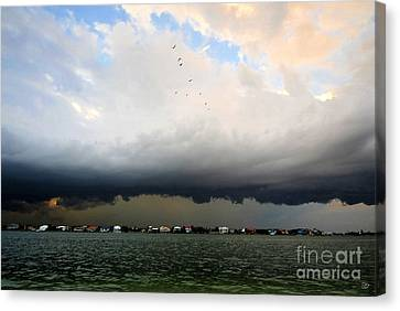 Into The Storm Canvas Print by David Lee Thompson