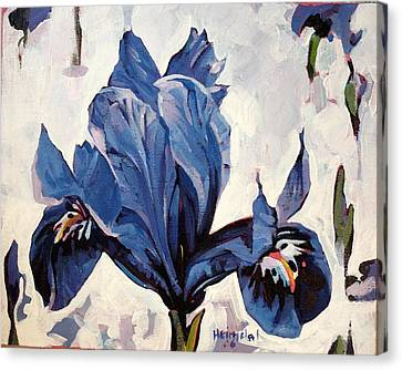Canvas Print featuring the painting Iris Snow by Tim  Heimdal