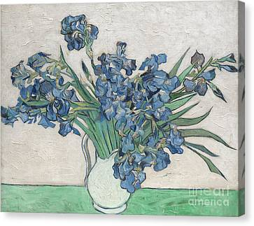 Horticultural Canvas Print - Irises, 1890 by Vincent Van Gogh