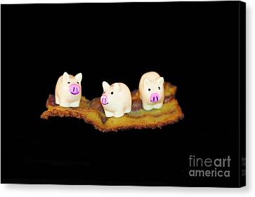 Ironic Pigs Canvas Print