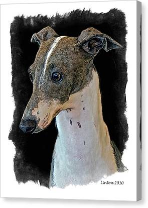 Italian Greyhound Canvas Print by Larry Linton