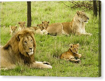 It's All About Family Canvas Print by Michele Burgess