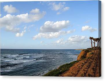 Jaffa Beach 5 Canvas Print