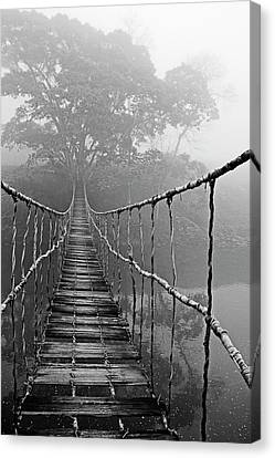 Jungle Journey Black And White Canvas Print by Skip Nall