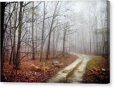 Jungle Journey - The Road Canvas Print