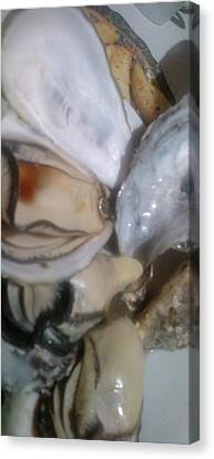 Oysters In Ponzu Vinegar Canvas Print