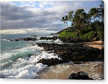 Ke Lei Mai La O Paako Oneloa Puu Olai Makena Maui Hawaii Canvas Print by Sharon Mau