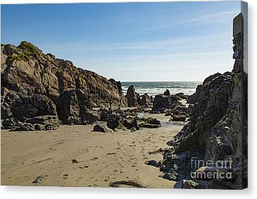 Canvas Print featuring the photograph Kennack Sands by Brian Roscorla