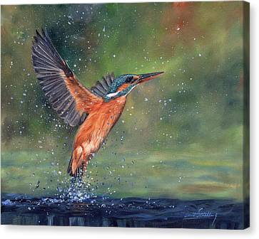 Canvas Print featuring the painting Kingfisher by David Stribbling