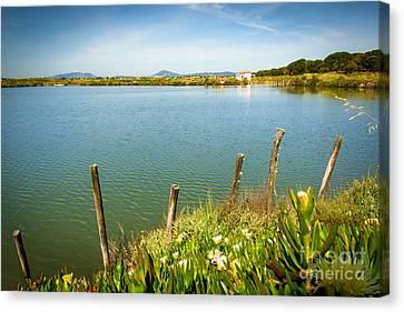Lake And Poles Canvas Print