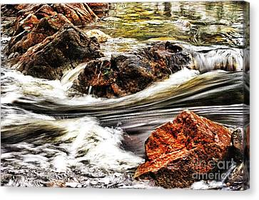 Lamina Flow Canvas Print by Blair Stuart
