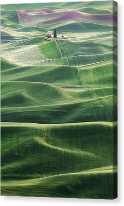 Land Waves Canvas Print by Ryan Manuel