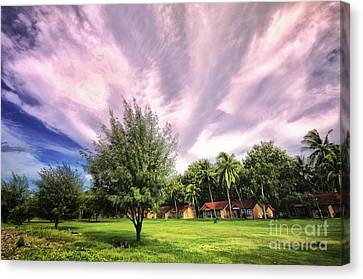 Canvas Print featuring the photograph Landscape  by Charuhas Images