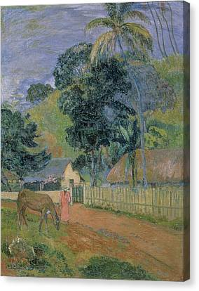 Landscape Canvas Print by Paul Gauguin
