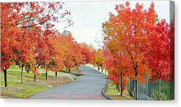 Canvas Print featuring the photograph Last Days Of Autumn by AJ Schibig