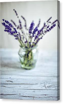 Lavender Still Life Canvas Print by Nailia Schwarz