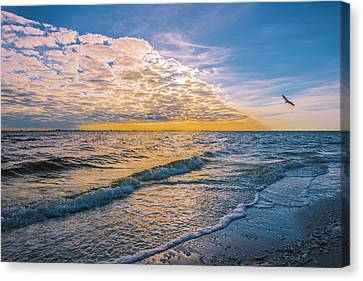 Canvas Print featuring the photograph Leading Edge by Steven Ainsworth