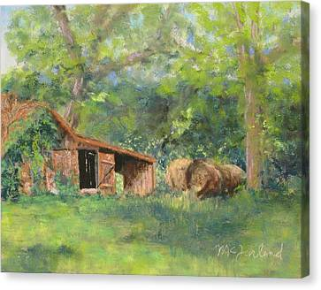 Leftover Hay Canvas Print by Lorraine McFarland