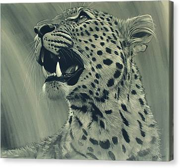 African Drawings Canvas Print - Leopard Portrait by Aaron Blaise