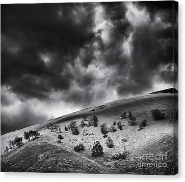 Sky Scape Canvas Print - Light In Dark Spaces by Tim Gainey