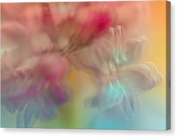 Lilac Floral Abstract 2. Watercolors Series Canvas Print by Jenny Rainbow