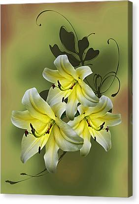 Lily Trio Canvas Print by Judy Johnson