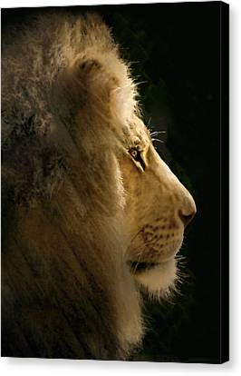 Lion Of Judah II Canvas Print by Sharon Foster