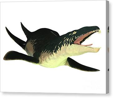 Liopleurodon Marine Reptile Canvas Print