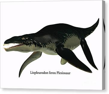 Liopleurodon Side Profile Canvas Print