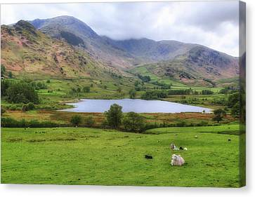 Little Langdale - Lake District Canvas Print by Joana Kruse