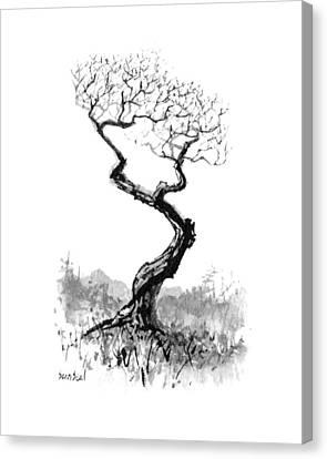 Little Zen Tree 1820 Canvas Print by Sean Seal
