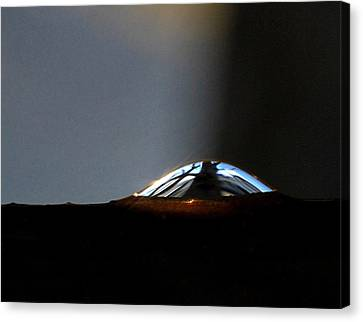 Canvas Print featuring the photograph Look Inside by Marilynne Bull