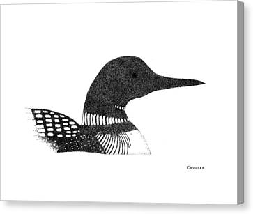 Loon Canvas Print - Loon by Ed Einboden