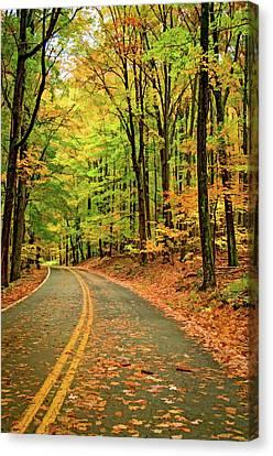 Lost In Pennsylvania - Paint Canvas Print by Steve Harrington